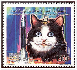 Кошки в космос